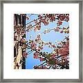 Outside Is The Best Side Framed Print