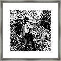 Overgrown Windpump Framed Print