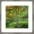 Painted Gardens Framed Print