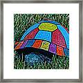 Painted Turtle Sprinkler Framed Print
