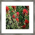 Painting In The Brush Framed Print