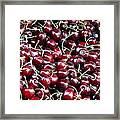 Paris Cherries Framed Print