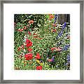 Patriotic Flowers Framed Print