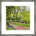 Peaceful Spring Park Framed Print by Cheryl Davis