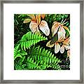 Peach Floral Framed Print