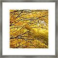 Perfect Autumn Framed Print