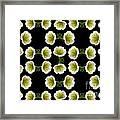 Petunias Framed Print