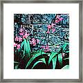 Pink Flowers Gray Wall Framed Print