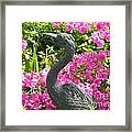 Pinkness Of A Bird Framed Print