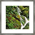 Place Of One Thousand Drips Framed Print