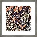 Plow Wheel Framed Print