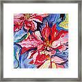Poinsettia Color Framed Print