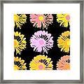 Pop Art Floral I -daisies -ii Framed Print