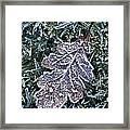 Powerscourt Estate, County Wicklow Framed Print