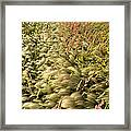 Prairie Crop With Weeds Framed Print