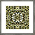 Psyches115 Framed Print