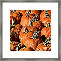 Pumpkins Galore Framed Print by Julie Palencia