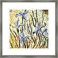 Purple Irises Framed Print