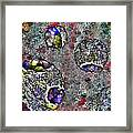 Puzzle Ball. Framed Print