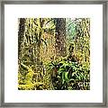 Rainforest Salad Bar Framed Print