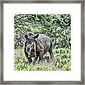 Ready To Charge Framed Print