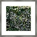 Rhinestone Diamonds Framed Print