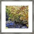 Road To Cades Cove Framed Print