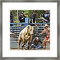 Rodeo Clowns To The Rescue Framed Print