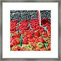 Rows Of Berries At Market Framed Print