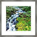 Rushing Mountain Stream Framed Print