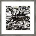 Scorpion Framed Print by Marita McVeigh