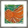 Sea Shell Framed Print