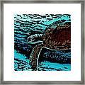 Sea Turtle Swimming Framed Print