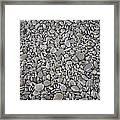 Seashore Rocks Framed Print