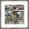Shallow Waters Framed Print