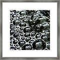 Shiney Bubbles Framed Print
