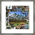 Southeastern Pine Forest Wildlife Poster Framed Print