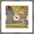 Spindizzy1233 Framed Print