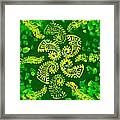 Spinning Greens Framed Print
