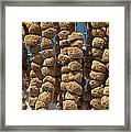 Sponge Docks Framed Print