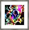 Stack Of Stargazers Dreaming Framed Print