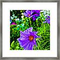Standin Out Framed Print