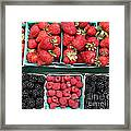 Strawberries Blackberries Rasberries - 5d17809 Framed Print by Wingsdomain Art and Photography