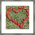 Strawberry Heart Framed Print