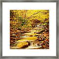 Streams Of Gold Framed Print