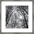 Sugarloaf Framed Print