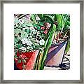 Summer Impatiens Framed Print by Peter Sit