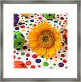 Sunflower And Colorful Balls Framed Print