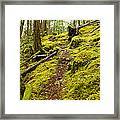 Sunshine Coast Trail Framed Print