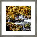 Surrounded By Autumn Framed Print